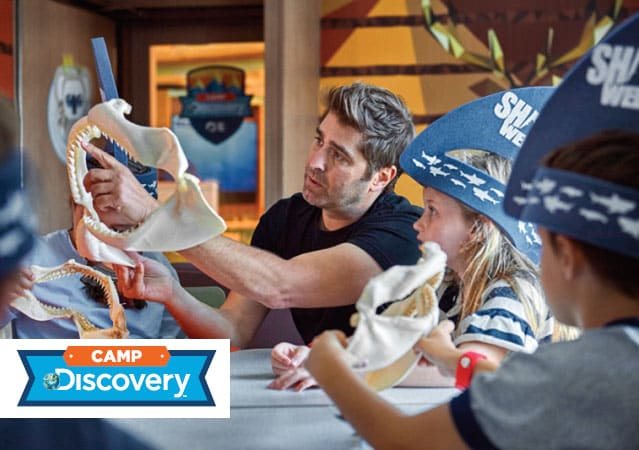 Camp Discovery: Tori Belleci teaching kids about sharks